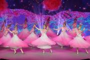 高歌复兴路 幸福新时代——海淀区文化馆举办庆祝新中国成立70周年华诞文艺演出
